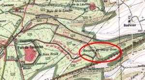 mardigrasmap